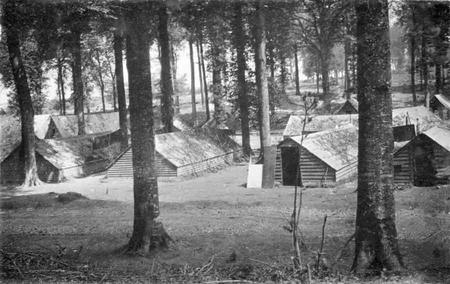 Martinsart wood military huts 1916