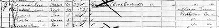 Extract From 1901 Census of Battersea London