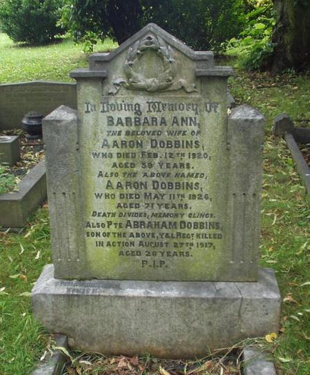 Profile picture for Abraham Dobbins