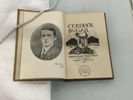 Hedd Wyn, Cerddi'r Bugail
