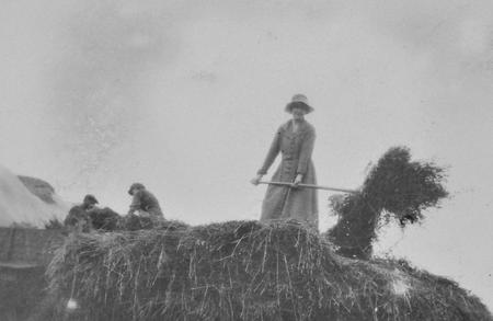 Harvesting at Lee Farm, Colworth, September 1920.