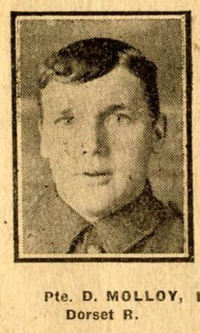 Profile picture for David Molloy