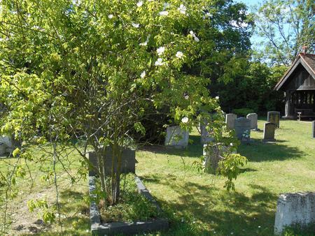 Margaret E. Robinson, Headstone locn., Trumpington