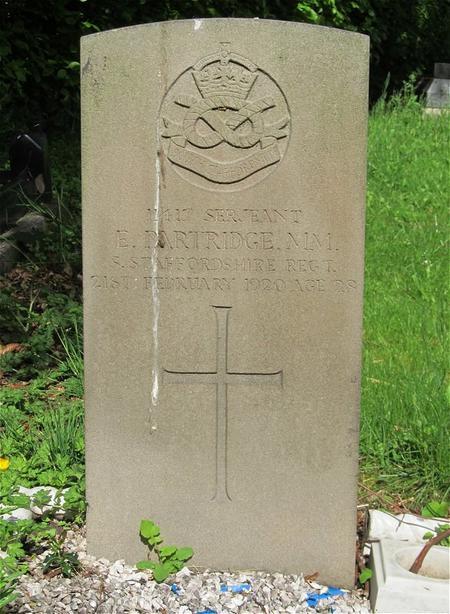 Profile picture for Ernest Partridge