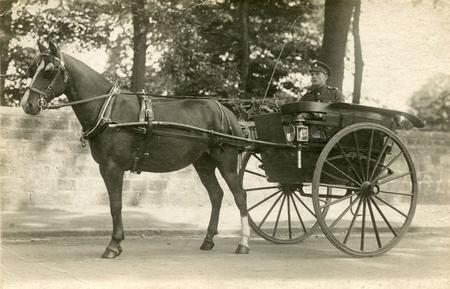 Horace Stables in a Governess cart.
