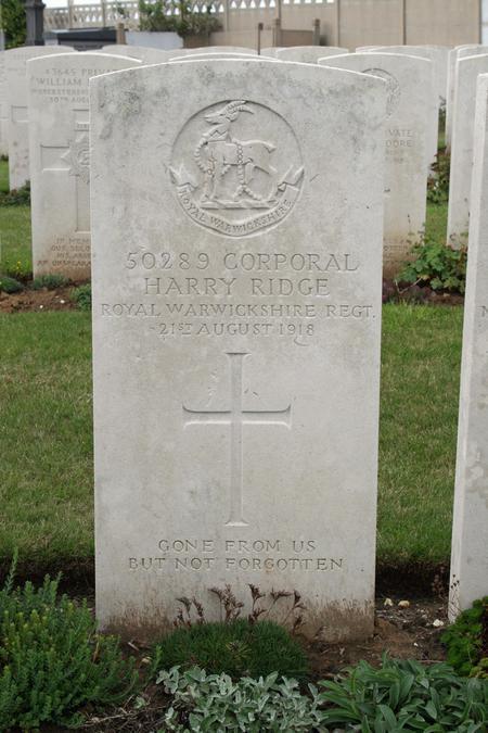 Profile picture for Harry Ridge