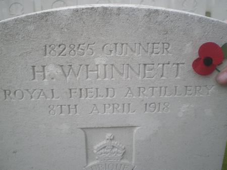 Profile picture for Hedley Whinnett