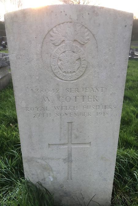 Profile picture for William Cotter