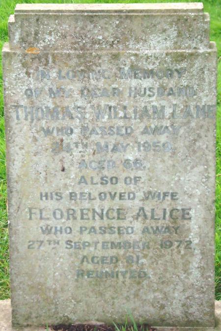 Profile picture for Thomas William Lane