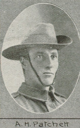 Profile picture for Albert Henry Patchett