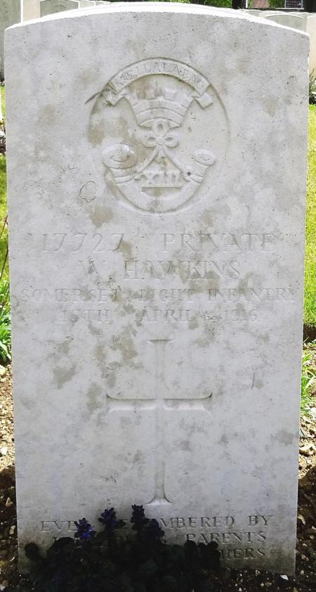 Profile picture for William Hawkins