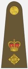 Lt-Col Rank Badge