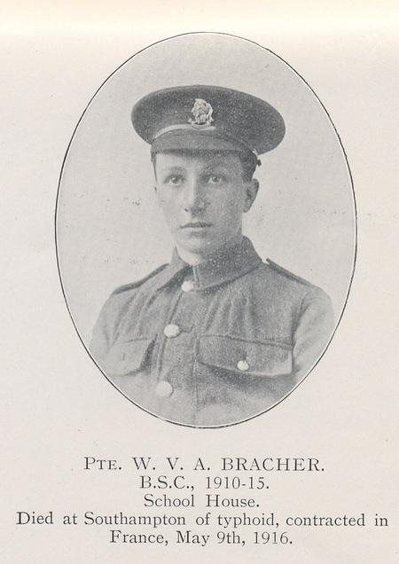 Profile picture for William Victor  Allen Bracher
