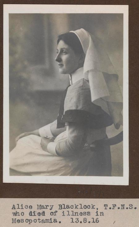 Profile picture for Alice May Blacklock