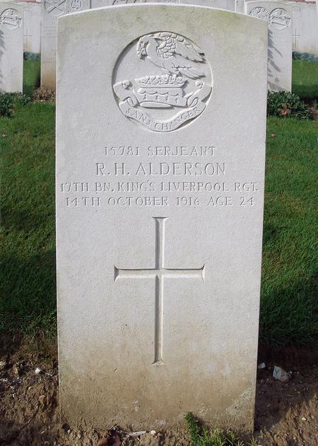 Profile picture for Robert Harold Alderson