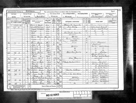 Census 1891 H V Birks family