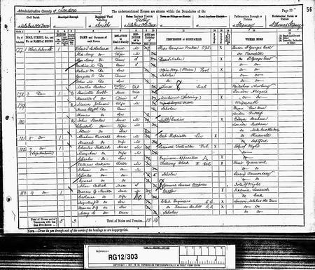 1891 Census for Johnson family