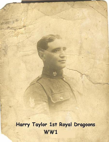 Profile picture for Harry Cave Taylor