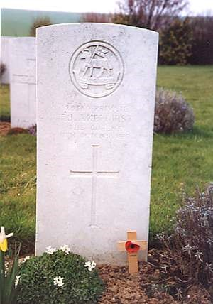 Profile picture for Thomas John Akehurst