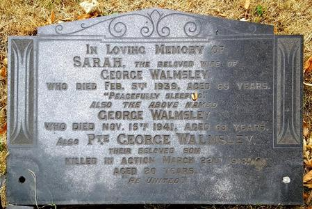 Profile picture for George Walmsley