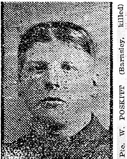 Profile picture for William Poskitt
