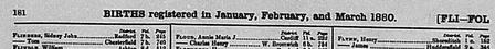 GRO Birth Index 1880