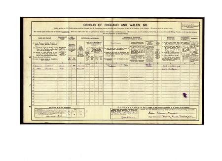 1911 census return