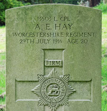 Profile picture for Albert Edward Hay