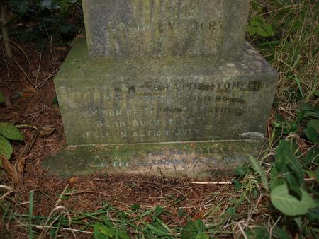 Profile picture for David Musgrove Bratherton