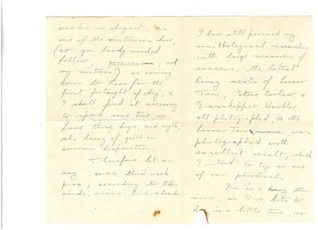 Amusing letter between two brothers pp. 2-3