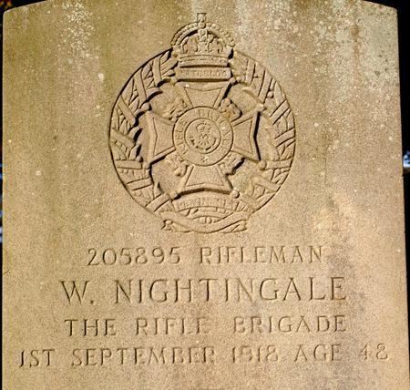 Profile picture for William Nightingale