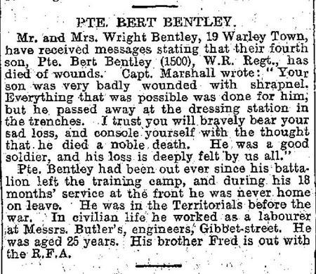 Profile picture for Bertie Bentley