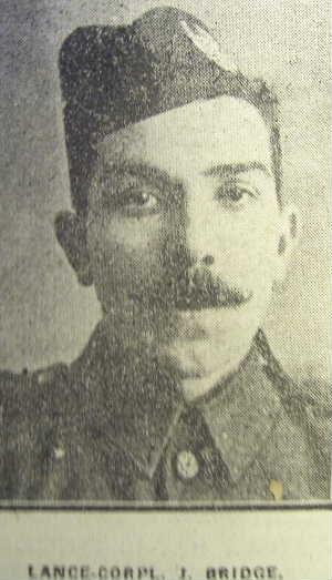 Profile picture for James Bridge