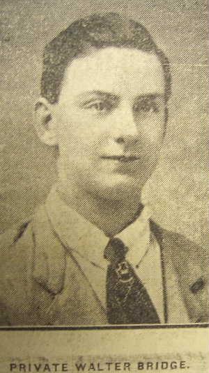 Profile picture for Walter Bridge