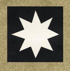 47th Division Flash