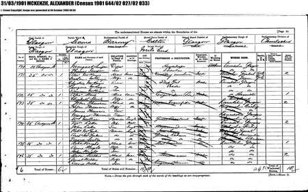 Census 1901 - Address 35 Ardgown Street, Glasgow