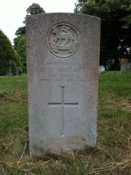 Profile picture for Albert Edward Mullaly
