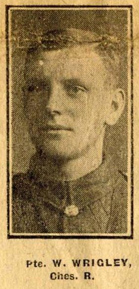 Profile picture for William Wrigley