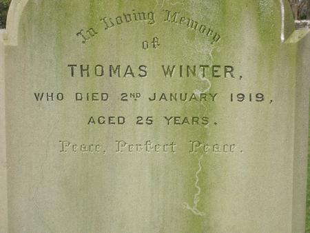 Profile picture for Thomas Winter