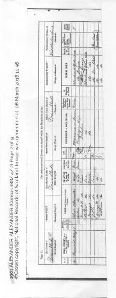 Census record 1901
