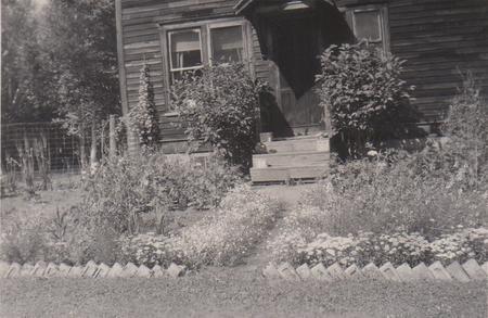 Wilsona - front yard