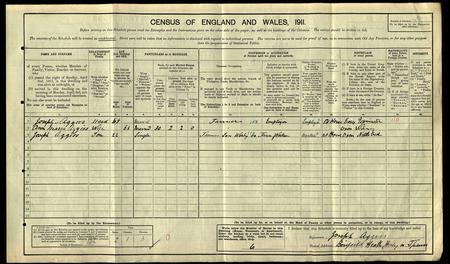 1911 England Census Record