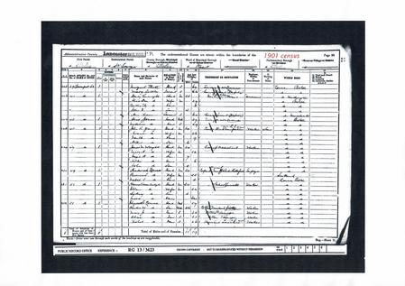 Extract from 1901 Census